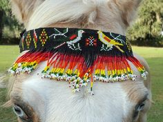Birds and Butterfly Seed Beaded Equine Browband - Native American Style Horse Brow Band - American Indian Style Tack Bead Sewing, Native American Fashion, American Indians, Amazing Gardens, Beading Patterns, Indian Fashion, Seed Beads, Brows, Collars