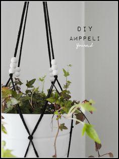 Amppeli yourssblogi.blogspot.fi