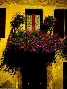 Doorway, Pienza, province of Siena , Tuscany region Italy - Absolutely love this balcony flower garden display!  Over the top and a true Parade Of Gardens example on display here!
