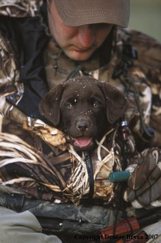 Waterfowl hunter with chocolate Lab pup.
