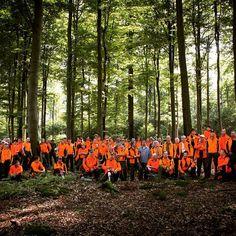 Immer wenn starkes Wertholz, wie bspw. Furniereichen, geerntet werden, kommen unsere Forstwirte mit ihrer Motorsäge zum Einsatz. Nur sie können das Wertholz so ernten, dass es gänzlich unbeschädigt bleibt. #BaySF #Bayern #Wald #Staatswald #Holz #Wood #Holzfällen #Holzernte #Motorsäge #Waldarbeit #Forstwirtschaft