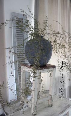 Wilde Asparagus stoer sober landelijk