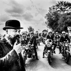 distinguished gentleman ride