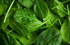 Spinach is a dark green, leafy vegetable which is super low in calories and packed with a ton of nutrients and antioxidants. This healthy superfood can be eaten 5 Am Tag, Foods High In Magnesium, Spinach Health Benefits, Spinach Nutrition, Moringa Benefits, Vegetarian Protein Sources, Protein Diets, Vegan Vegetarian, Cancer Fighting Foods