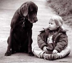 When most of us talk to our dogs, we tend to forget they're not people. - Julia Glass