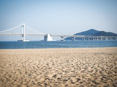 Wondering what to do in Busan, South Korea? Here's the ultimate guide, with 50 things to do in Busan, my personal favorite city in South Korea! South Korea Photography, Stuff To Do, Things To Do, Busan South Korea, Germany And Italy, Jeju Island, Plan Your Trip, The Good Place, Tours