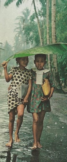 Balinese umbrella walking in the rain 1969 Indonesia