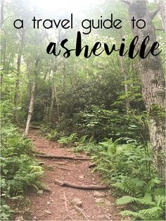 things to do in asheville nc intro