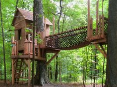 Grandpa [Lisa's dad] and John are going to build a tree house with a zip line for the boys in grandpa and grandma's backyard.  -l.s.