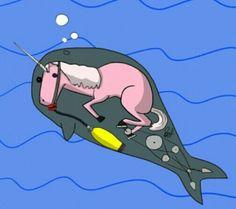 Narval: especie de mamifero acuatico que vive en el polo......