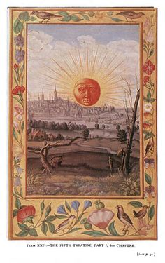 "In the words of the art historian Jörg Völlnagel, ""the Splendor Solis is by no means a laboratory manual, a kind of recipe book for alchemists. Rather, Splendor Solis sets forth the philosophy of alchemy, a world view according to which the human being (the alchemist) exists and acts in harmony with nature, respecting divine creation and at the same time intervening in the process underlying that creation, all the while supporting its growth with the help of alchemy"""