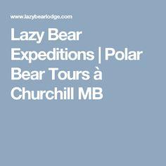 Lazy Bear Expeditions | Polar Bear Tours à Churchill MB