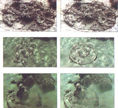 See the chariot wheels in the red sea on my bucket list close up view of a round chariot wheels found off the gulf of aqaba coast sciox Gallery