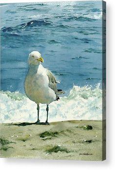 Montauk Gull Painting by Tom Hedderich - Montauk Gull Fine Art. Informations About Montauk Gull by Watercolor Animals, Watercolour Painting, Painting & Drawing, Watercolor Print, Watercolors, Beach Watercolor, Art Plage, Guache, Beach Art