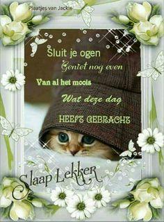 Good Night Sweet Dreams, Animal Crossing, Animals And Pets, Good Morning, Slaap Lekker, Funny, Gifs, Hearts, Good Night
