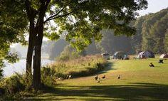 Camping Landgoed Geijsteren in Maashees gelegen aan de maas biedt ruimte en rust om te ontspannen en te genieten van de prachtige omgeving.