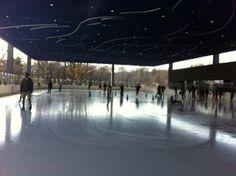 Ice skating at Le Frak Center in Prospect Park. Prospect Park, Peaceful Places, Ice Skating, Long Island, Marina Bay Sands, Brooklyn, York, Skating
