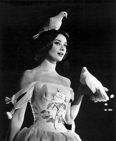"Audrey Hepburn Funny Face | Photo: ""Funny Face"" Audrey Hepburn 1956 Paramount **I.V.."