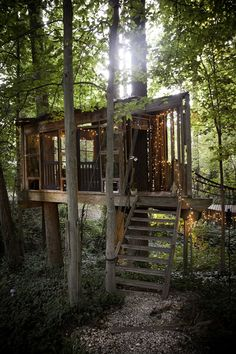 Man in Atlanta linked three cozy tree houses in his backyard which helps him stay connected to the earth.