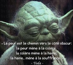 PARTAGE OF PAGE DE LA RAGE.........ON FACEBOOK.........FEAR IS THE PATH TO THE DARK SIDE: FEAR LEADS TO ANGER , ANGER LEADS TO HATE , HATE LEADS TO SUFFERING.........