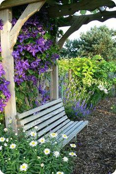 bench under an arbor