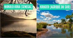 Top 10 des plus beaux parcs naturels dAfrique pour faire des safaris de qualité