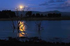 Moonrise South Africa, Celestial, Sunset, Outdoor, Outdoors, Sunsets, Outdoor Games, Outdoor Living