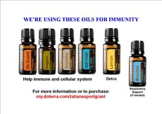 This is what I'm doing to help my loved ones and myself with our immune system Doterra Breathe, Copaiba, Doterra Essential Oils, Immune System, Eyeliner, First Love, Stress, Essentials, Health
