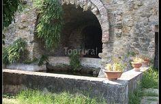 antica vasca con sorgente nel giardino dell'Azienda  casalini