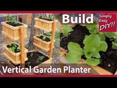 Learn how to grow, create and make a vertical DIY garden box that works well at home and can be made simply by following the step by step video tutorial