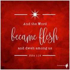 And the Word became flesh, and dwelt among us, and we saw His glory, glory as of the only begotten from the Father, full of grace and truth. (John 1:14 NAS)  https://www.facebook.com/FOIGM/photos/10154372759748439