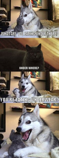 Made me chuckle