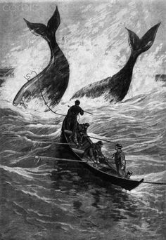 19th-Century Woodcut of Whaling