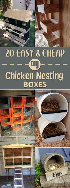 Chicken Coop - 20 Easy and Cheap DIY Chicken Nesting Boxes … Building a chicken coop does not have to be tricky nor does it have to set you back a ton of scratch. Cheap Chicken Coops, Chicken Barn, Chicken Coup, Portable Chicken Coop, Backyard Chicken Coops, Chickens Backyard, Diy Chicken Feeder, Chicken Houses, Chicken Eggs