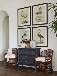 cool Déco Salon - This home in Naples Florida was a ground-up build where Summer Thornton was brou...