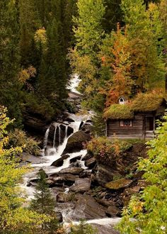 Autumn in the woods! Love this little rustic cabin by the stream.