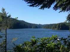 EEL LAKE - Photo of William M. Tugman State Park