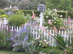 California garden July-2009 from Susan Branch