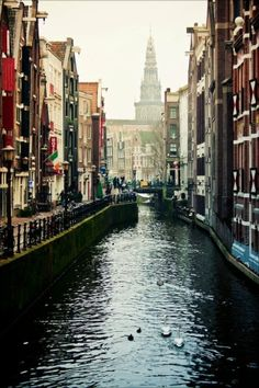 Amsterdam, city of my dreams... eheh