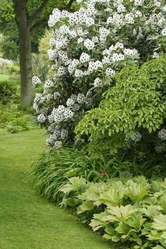 Beth Chatto Gardens, England