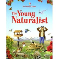 The Young Naturalist (Usborne Guide) -Andrew Mitchell