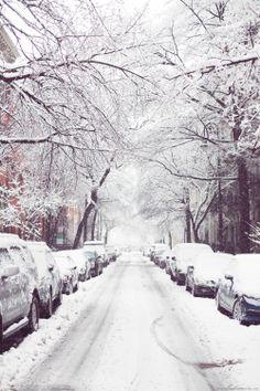 winter in new york / ❤️