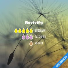 Revivify - Essential Oil Diffuser Blend