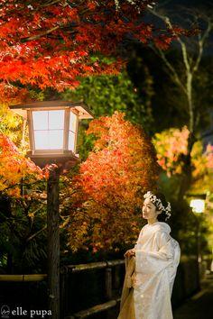 紅葉×嵐山花灯路 |*elle pupa blog*