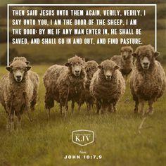 niv verse of the day psalm 19 14 scripture pinterest verses