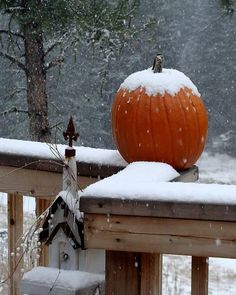 Early Autumn Snow; Just thought this was natures beautiful decoration.