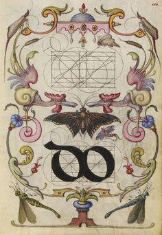Hoefnagel-typographie-police-construction-minuscule-symbole-04