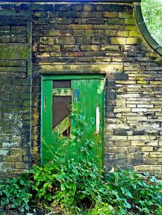 Old green door and bricks, stylish patina www. Mean Green, Go Green, Green Grass, Green Colors, World Of Color, Color Of Life, Green Life, Shades Of Green, 50 Shades