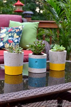 DIY Painted Concrete Planters (How to make your own concrete planters) with…