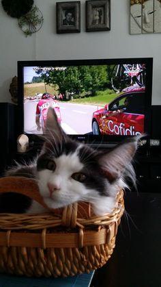 Vendy, fanda Tour de France
